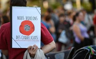 """C'est la section communale du mouvement """"Nous voulons des coquelicots"""" qui a organisé la manifestation. (archives)"""