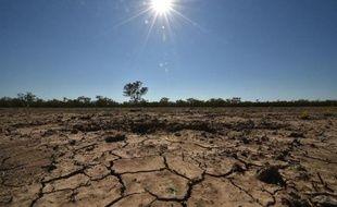 La région de Walgett en Australie, touchée par la sécheresse, le 11 février 2015