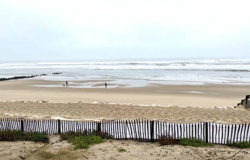 Cocaïne échouée sur la côte atlantique : Un bodyboarder professionnel condamné pour avoir récupéré de la drogue