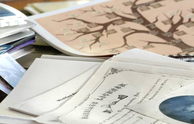 648x415 genealogiste quel role dans une succession 2
