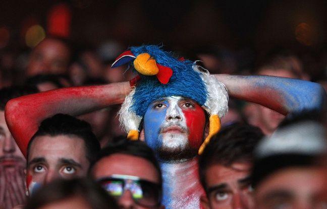 Le coq Français a le bec dans l'eau après la défaite