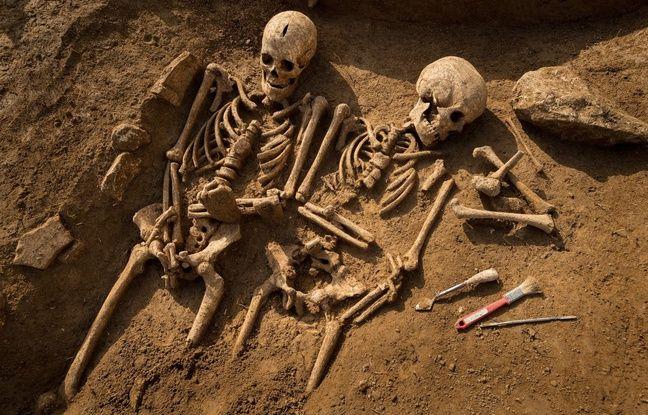 Les squelettes des fouilles de Vitry