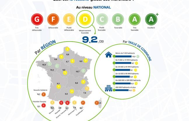 Infographie Collectif
