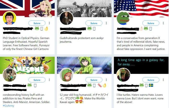 Compte Twitter utilisant les émojis verre de lait et grenouille.