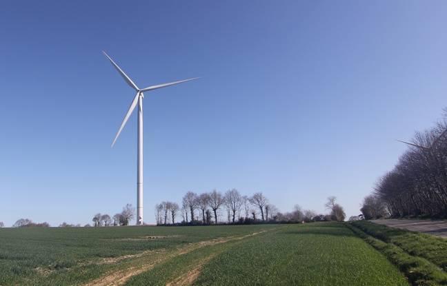 Bretagne: La justice autorise un projet de parc éolien dans le deuxième plus grand massif forestier