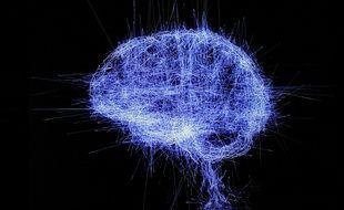 Oeuvre d'art représentant le cerveau, exposée par le Grand Palais en 2018.
