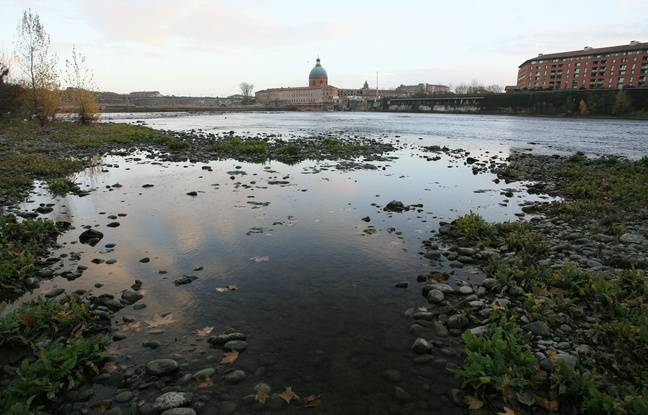 Toulouse: Un squelette humain découvert en bord de Garonne