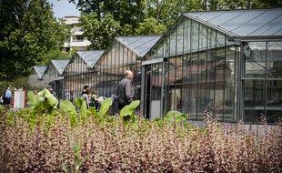 Strasbourg: Un projet de serres urbaines chauffées grâce à l'énergie d'une centrale biomasse (Illustration)