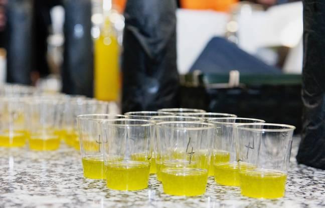 Présentations d'huiles nouvelles aux Olio Nuovo Days