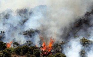 Une exploitation agricole a été détruite par le feu dans la nuit de samedi à dimanche à la Chaloupe Saint-Leu sur les hauteurs de l'ouest de l'île de la Réunion où 43 personnes ont dû être évacuées à la suite de la propagation d'un incendie dans le parc national, a annoncé la préfecture de la Réunion.