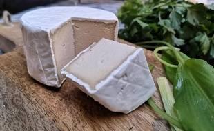 Ceci n'est pas un vrai fromage mais un produit vegan.