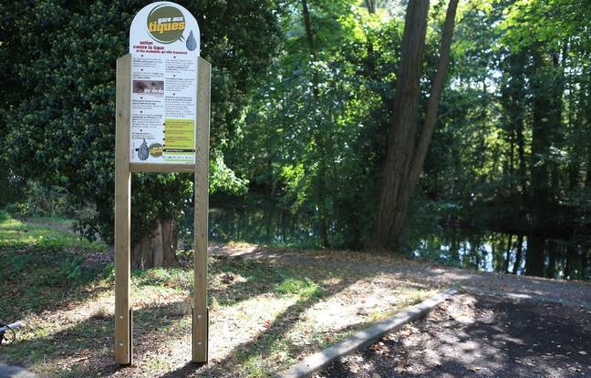Panneaux de prévention des risques liés aux morsures de tiques. Forêt du Neuhof.