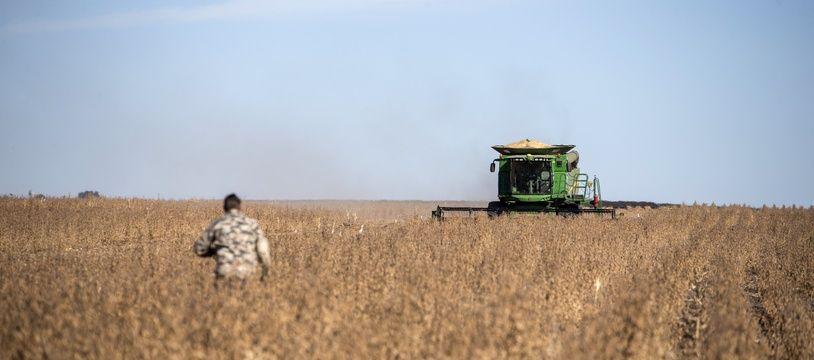 Un fermier dans un champ de soja près de Bothaville, en Afrique du Sud.