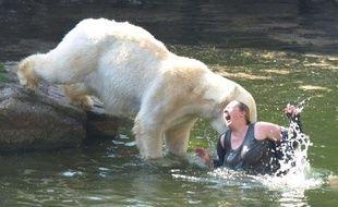 Une femme est attaquée par un ours polaire après avoir sauté dans la fosse au zoo de Berlin, le 10 avril 2009.