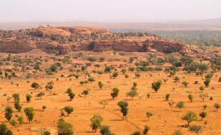 L'informatique moderne permet de mieux repérer les arbres et arbustes isolés dans des zones arides et semi-arides