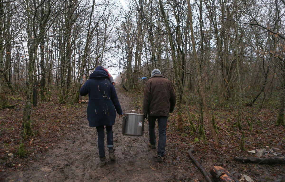 La forêt cédée par la commune de Mandres-en-Barrois n'est pas la même que le Bois-Lejuc occupé depuis des mois par les opposants au projet. Illustration –