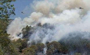 Des hélicoptères larguent de l'eau pour contenir le feu à Wakefield, en Nouvelle-Zélande.