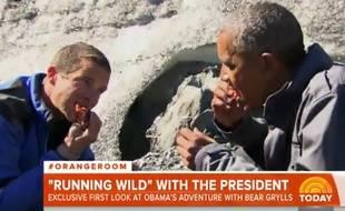 Barack Obama mange du saumon avec Bear Grylls en 2015.