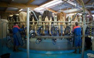 Une ferme d'éleveurs laitiers près de Niort le 18 mars 2015