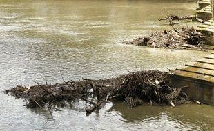 La Garonne toulousaine devrait atteindre son maximum en début de soirée. Archives.