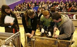 De jeunes éleveurs lors d'un concours de bergers au Salon de l'Agriculture le 27 février 2016 à Paris