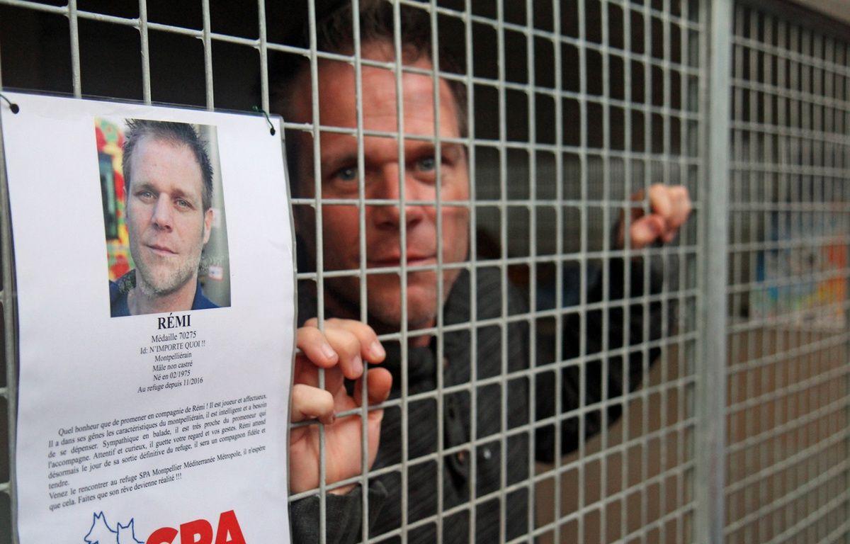 Rémi Gaillard est sorti de sa cage dans laquelle il s'était enfermé au refuge de la SPA de Montpellier – J. Diesnis / Maxele Presse