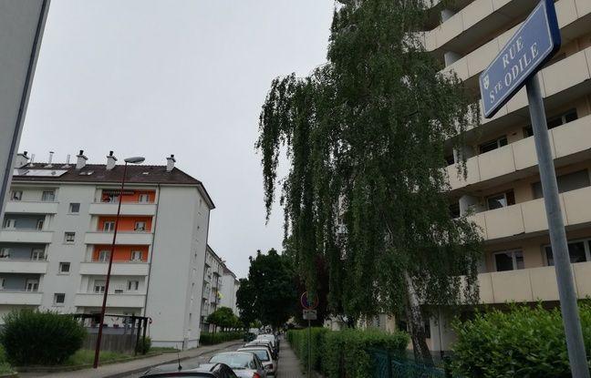 Ces bâtiments le long de la rue de Lattre de Tassigny sont situés juste à côté du site de Heineken à Schiltigheim.