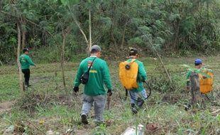 Des forestiers philippins patrouillent dans le parc de La Mesa, seul espace naturel de Manille, avec plus de 50 kilomètres de chemins de randonnée, le 14 février 2015