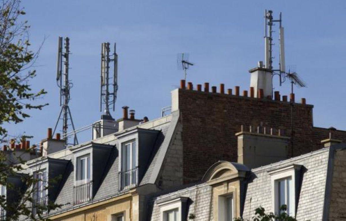 Les députés écologistes devraient faire adopter jeudi par l'Assemblée un encadrement de l'exposition aux ondes électromagnétiques, notamment par les antennes-relais, et l'interdiction des pesticides dans les espaces verts publics à partir de 2020. – Jacques Demarthon AFP