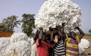 Avec le Mali, le Burkina Faso et le Tchad, le Bénin se bat à l'OMC depuis 2003 pour que les Etats industrialisés producteurs de coton, surtout les Etats-Unis, suppriment les subventions aux exportations et diminuent les soutiens directs à leurs agriculteurs.