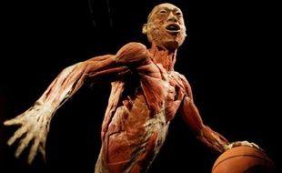 Plus de 25 millions de personnes ont déjà observé ces corps sans vie à travers le monde...   Conception : E. Drouard