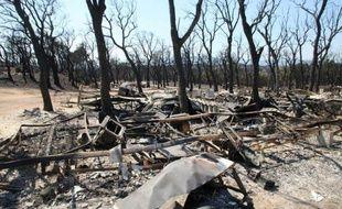 """L'incendie qui a fait quatre morts et dévasté 14.000 hectares de végétation dans le nord-est de l'Espagne depuis dimanche était mardi soir """"en phase de contrôle"""", a annoncé le ministre de l'Intérieur du gouvernement catalan, Felip Puig."""