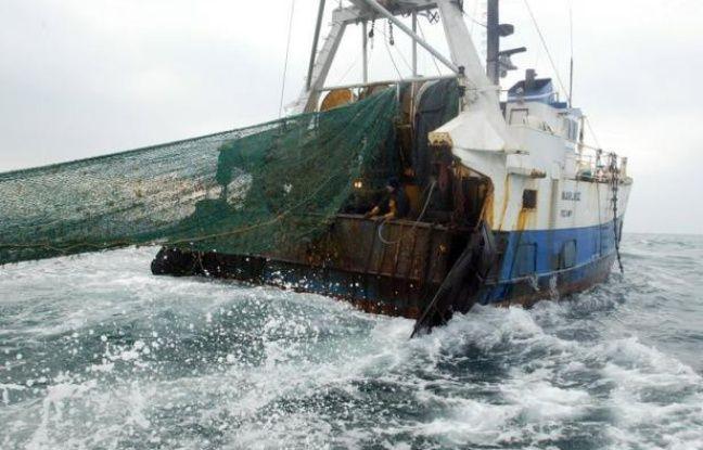 """""""Scandaleux"""", """"inacceptable"""", """"irrationnel"""": la colère gronde en Bretagne après la proposition de règlement européen d'interdire le chalutage en eaux profondes alors que les pêcheurs ont redoublé d'efforts et que l'état des stocks est désormais au vert selon les scientifiques."""
