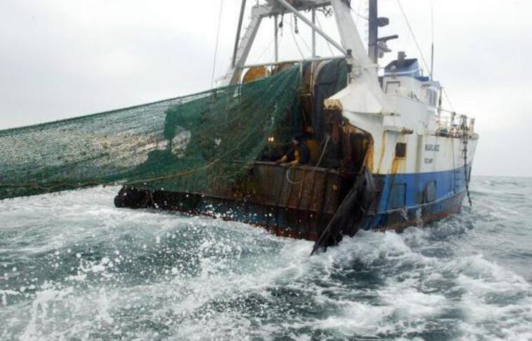 Tout comme l'agriculture intensive provoque l'érosion des sols et chamboule les écosystèmes, la pêche industrielle au chalut nivelle le fond des océans dans le monde entier, avertissent des chercheurs espagnols.