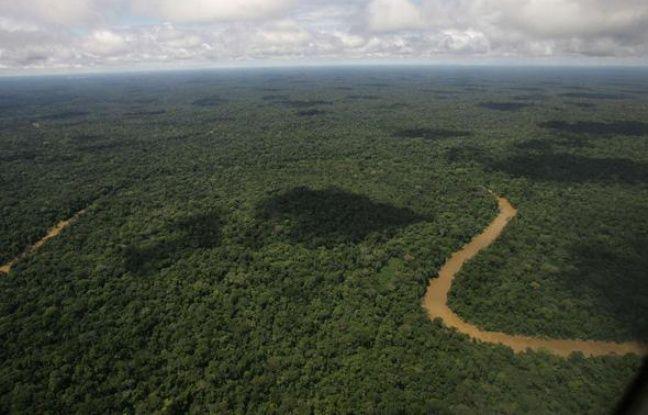 Vue aérienne du parc national Yasuni, en Equateur.