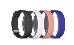 Le SmartBand 2 sera disponible en septembre en quatre couleurs.