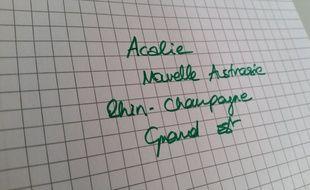 Dans notre sondage, vous avez plébiscité le nom «Grand Est» pour la région Alsace-Champagne-Ardenne-Lorraine.