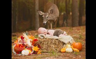 Une biche s'est incrustée pendant une séance photo bébé, le 20 octobre 2015 en Louisiane, aux Etats-Unis.