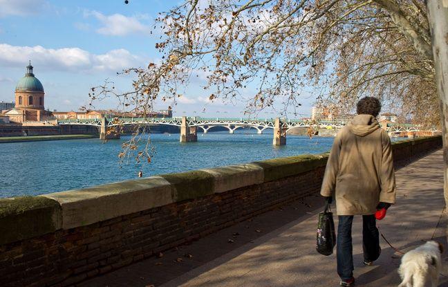 Résultats des municipales à Toulouse: «Mistigri», camouflage... Comment (et pourquoi) la Ville rose a-t-elle résisté à la vague verte?