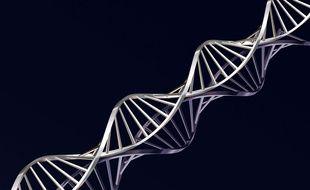 L'ADN, illustration.