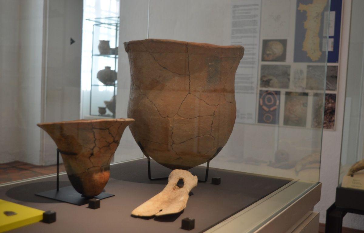 Cette sorte de pelle réalisée à partir d'un os est aussi une pièce à haute valeur de l'exposition. – B. Poussard / 20 Minutes.