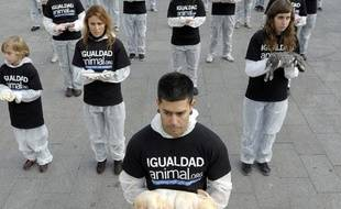Des militants réclamant l'égalité de droits pour les animaux posent avec des cadavres d'animaux à Madrid, Espagne, le 11 décembre 2010.