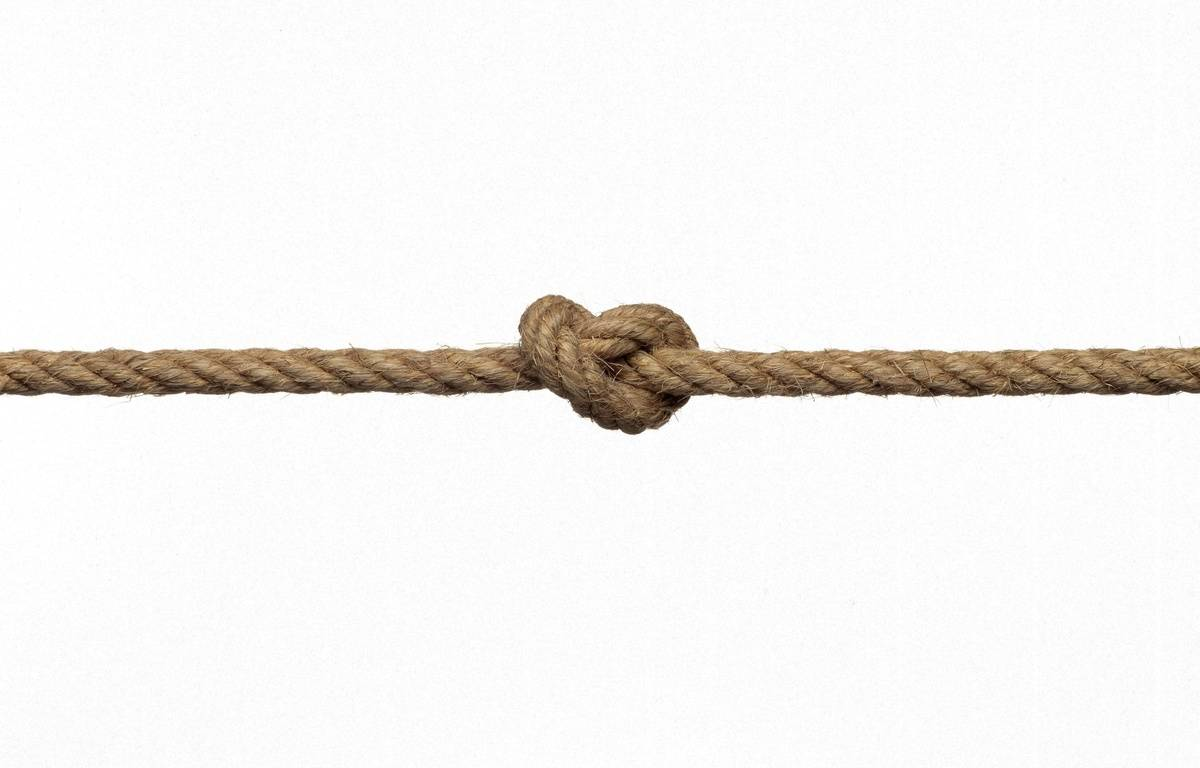 Illustration d'un noeud. – SUPERSTOCK/SUPERSTOCK/SIPA