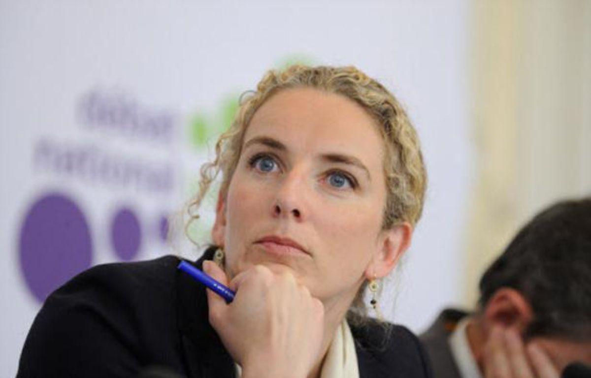 La ministre de l'Ecologie Delphine Batho, lors d'une conférence de presse sur la transition écologique, le 27 mai 2013 à Paris. – WITT/SIPA
