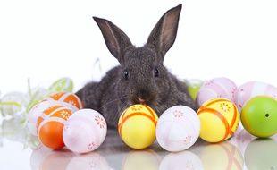 Qui des cloches, des lapins ou des cocottes apportent les œufs en chocolat?