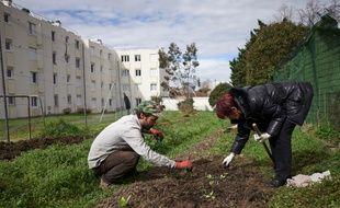 Au sein d'une résidence sociale, près de 1.000 m2 sont cultivés, la reproduction est consommé par les habitants.