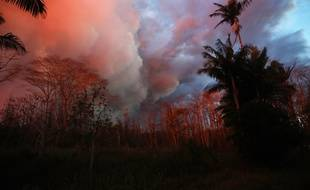 La lave du volcan Kilauea illumine les arbres à Hawaï, le 26 mai 2018.
