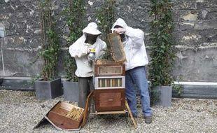 Des apiculteurs récoltent pour la première fois le miel des abeilles sentinelles de la rue de Grenelle à Paris.