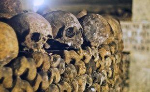 Ossements humains empilés dans les Catacombes de Paris, le 14 octobre 2014. (Illustration)