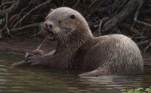 Le « Siamogale melilutra » vivait il y a 6 millions d'années et pesait près de 50 kg.